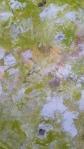 redondo verde 2